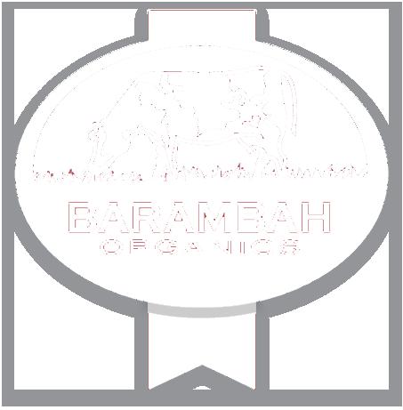 Barambah-Logo_email_white