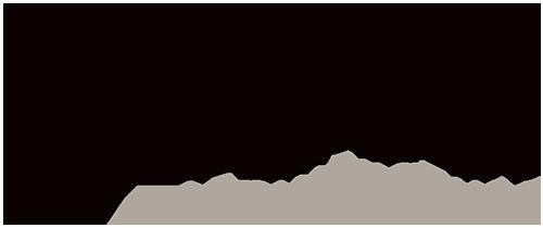 BSPN-Logo-RGB