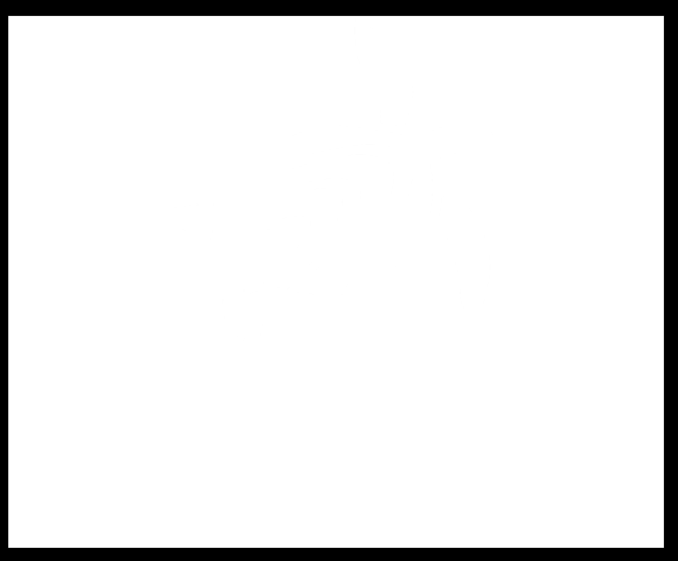 CW_Logo_white_RGB